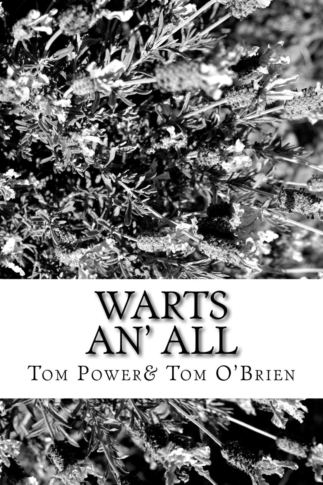 Warts_An_All_Cover_for_Kindle (1)